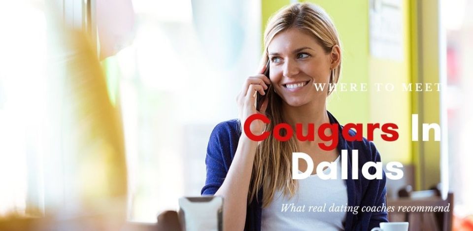 Cougars in Dallas Texas enjoy the occasional coffee break at the city's many cafes