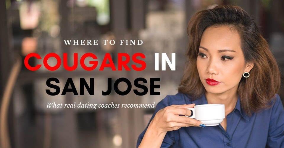 San Jose cougar drinking coffee