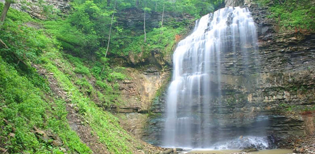 Tiffany Falls surrounded by greenery