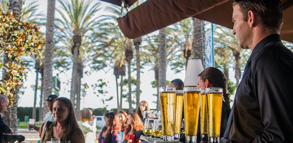 Savor the outdoors with cougars in San Jose at McCormick's and Schmick's