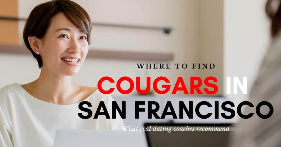 A San Francisco cougar during a meeting