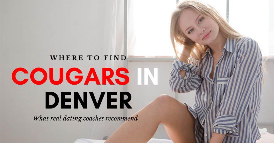 A Denver cougar in bed