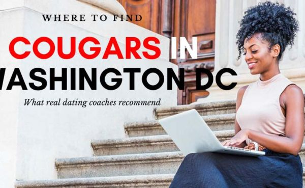 A sophisticated Washington DC cougar on her laptop
