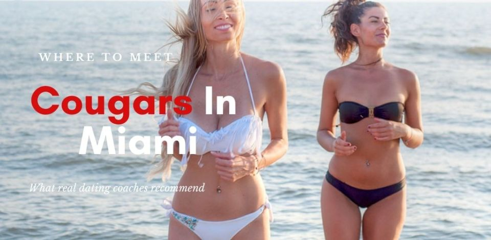 finding attractive cougars In Miami