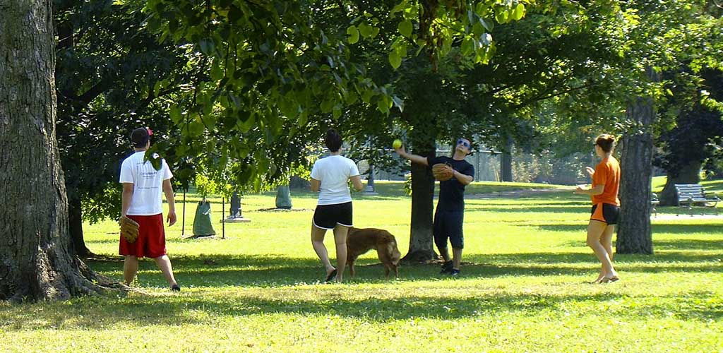 Friends playing baseball with their dog at Schiller Park