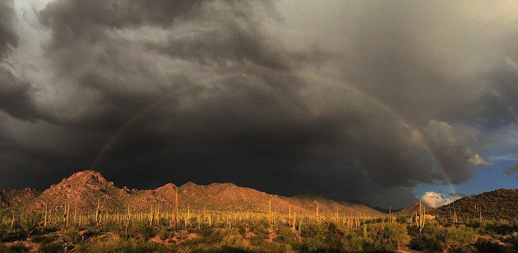 A rainbow over Saguaro National Park
