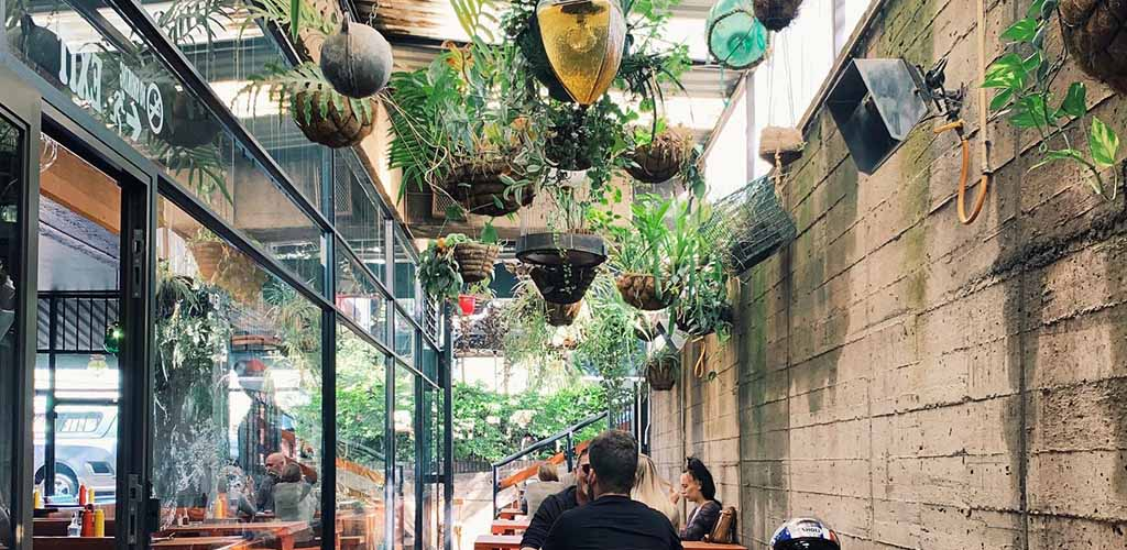 The plant-filled patio of The Lucky Rodrigo