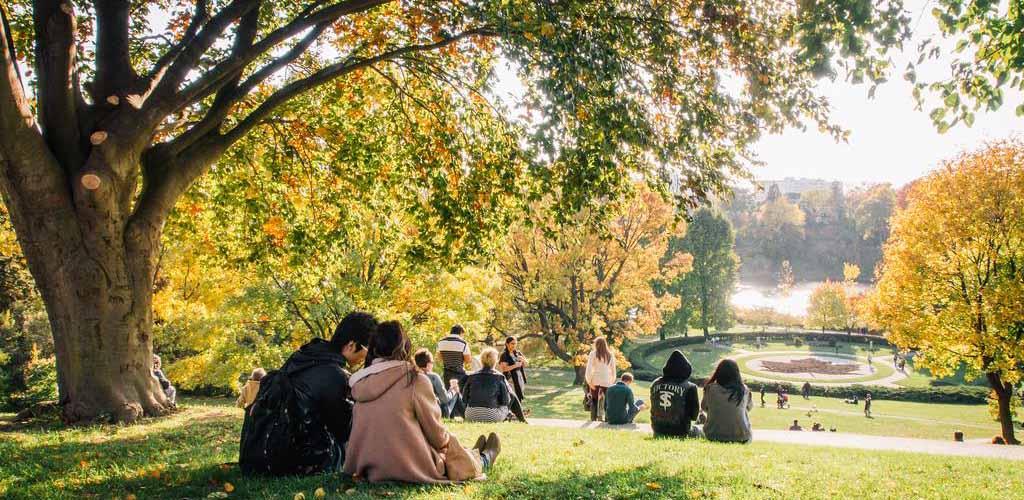 People enjoying the sunshine at High Park