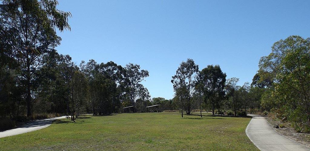 Berrinba Wetlands on a sunny day