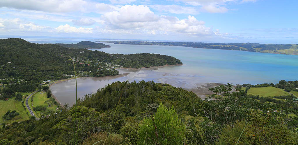 The gorgeous overhead view of Waitakere Regional Park