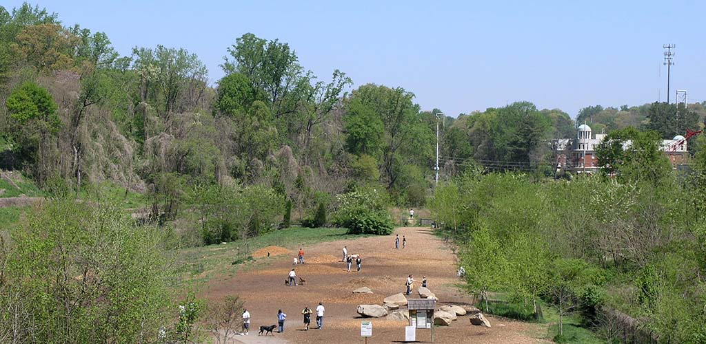 Folks walking their dogs at Piedmont Dog Park