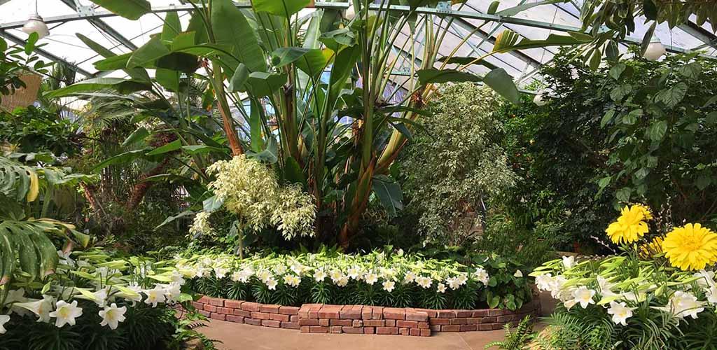 The indoor garden in Peoria Park