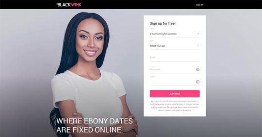BlankWink landing page