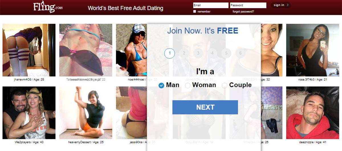Homepage for our Fling.com review