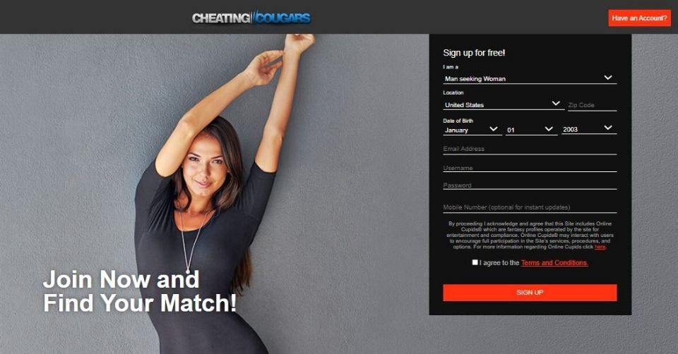Homepage for Cheating Cougars