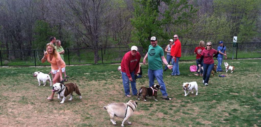 People having fun with their pets at the Frisco Dog Park