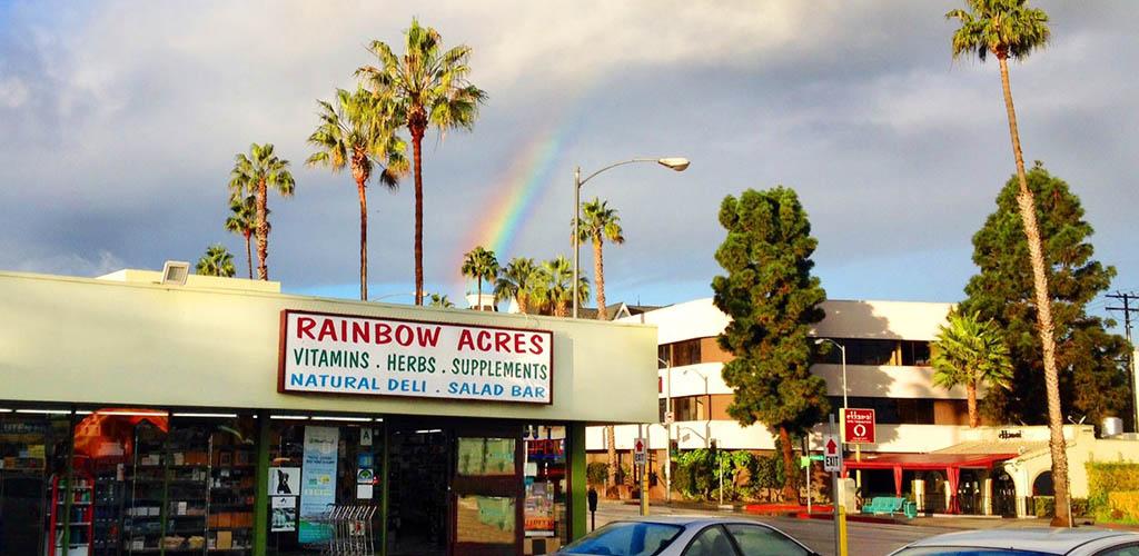 Rainbow Acres on a rainy day