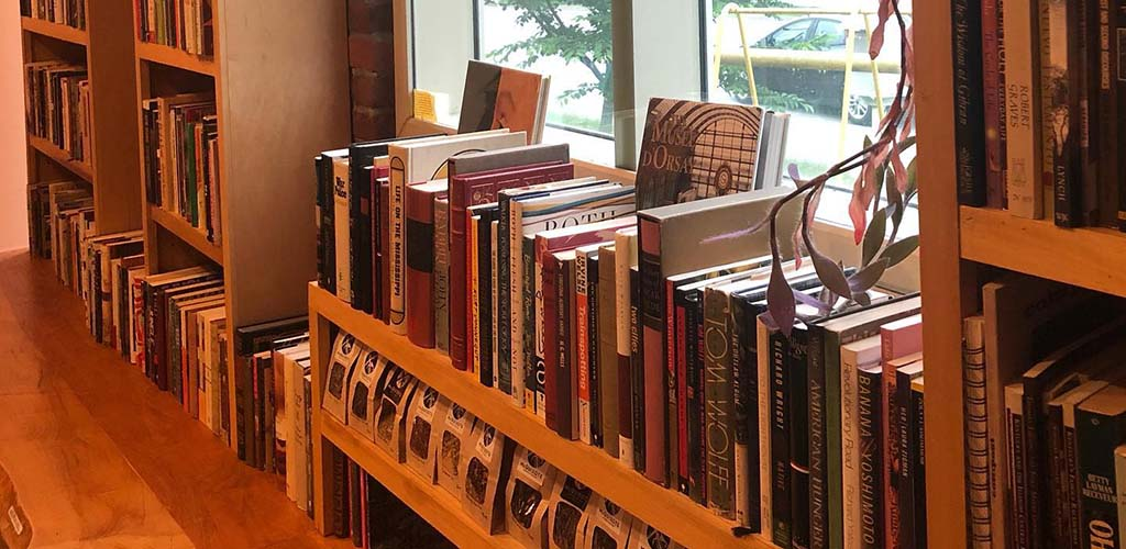 Books lining the windows at McQuixote Books
