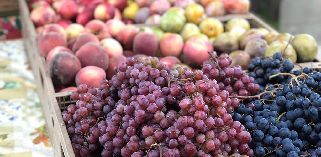 Fresh fruits from Vineyard Farmers Market