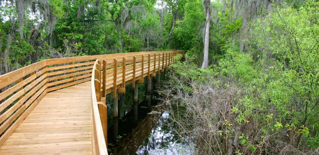 The bridge at Lettuce Lake Conservation Park