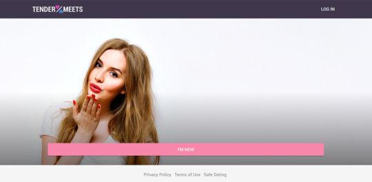 TenderMeets Landing Page