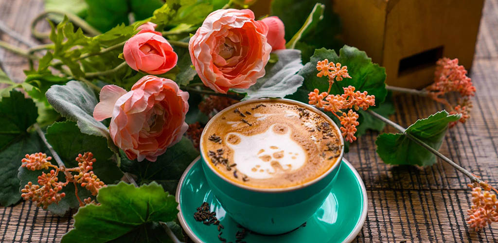 Cute coffee art from Home Coffee Roasters