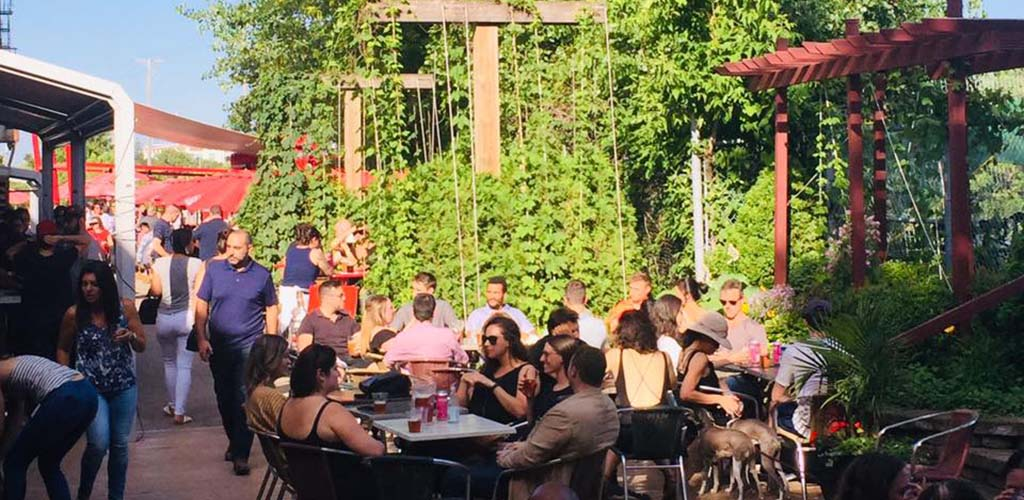 The plant-filled patio of Terrasse St-Ambroise