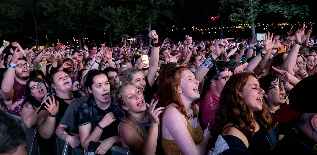 The youthful audience at a music festival