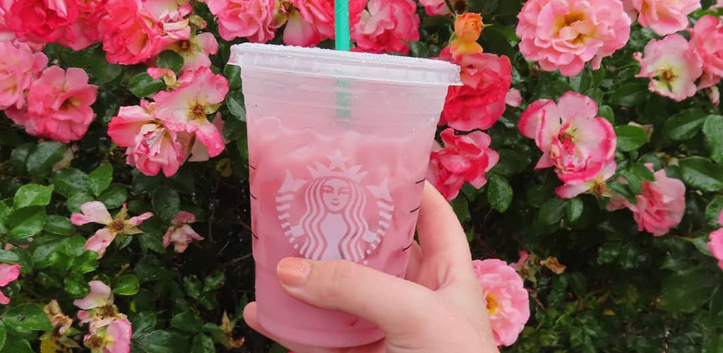 A summery drink from Starbucks