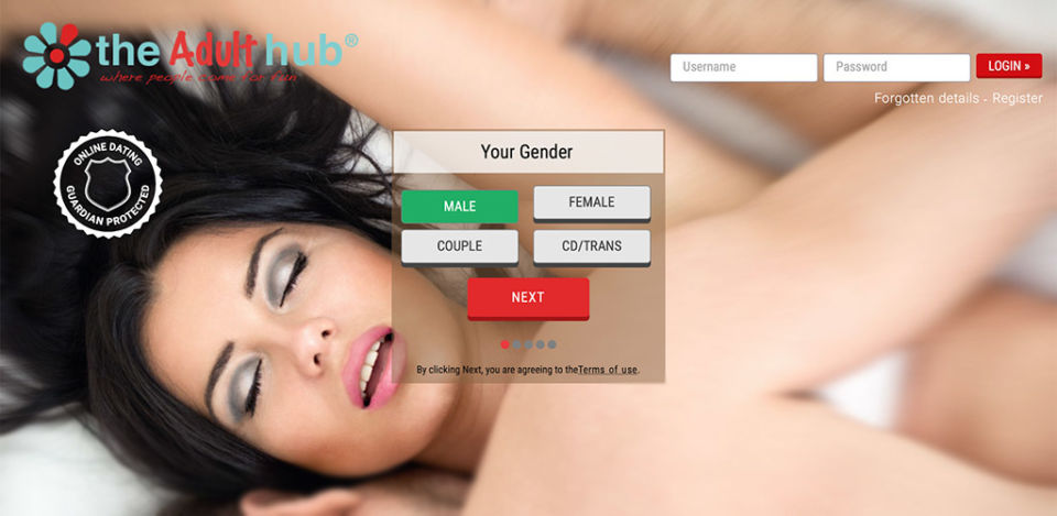 The Adult Hub landing page