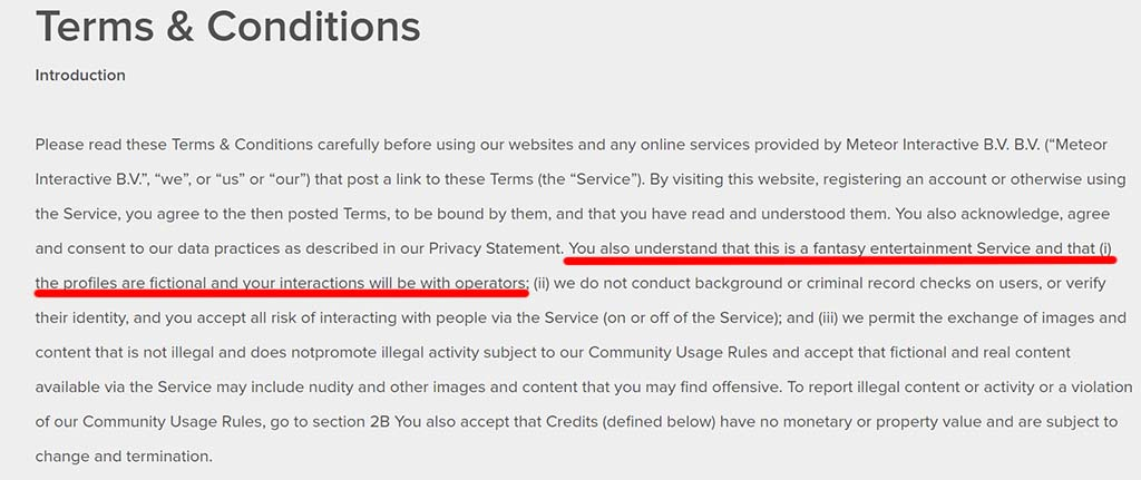 Terms and conditions admitting to creating fake profiles